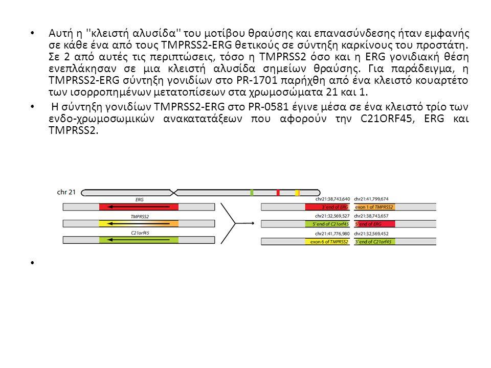 Αυτή η κλειστή αλυσίδα του μοτίβου θραύσης και επανασύνδεσης ήταν εμφανής σε κάθε ένα από τους TMPRSS2-ERG θετικούς σε σύντηξη καρκίνους του προστάτη.
