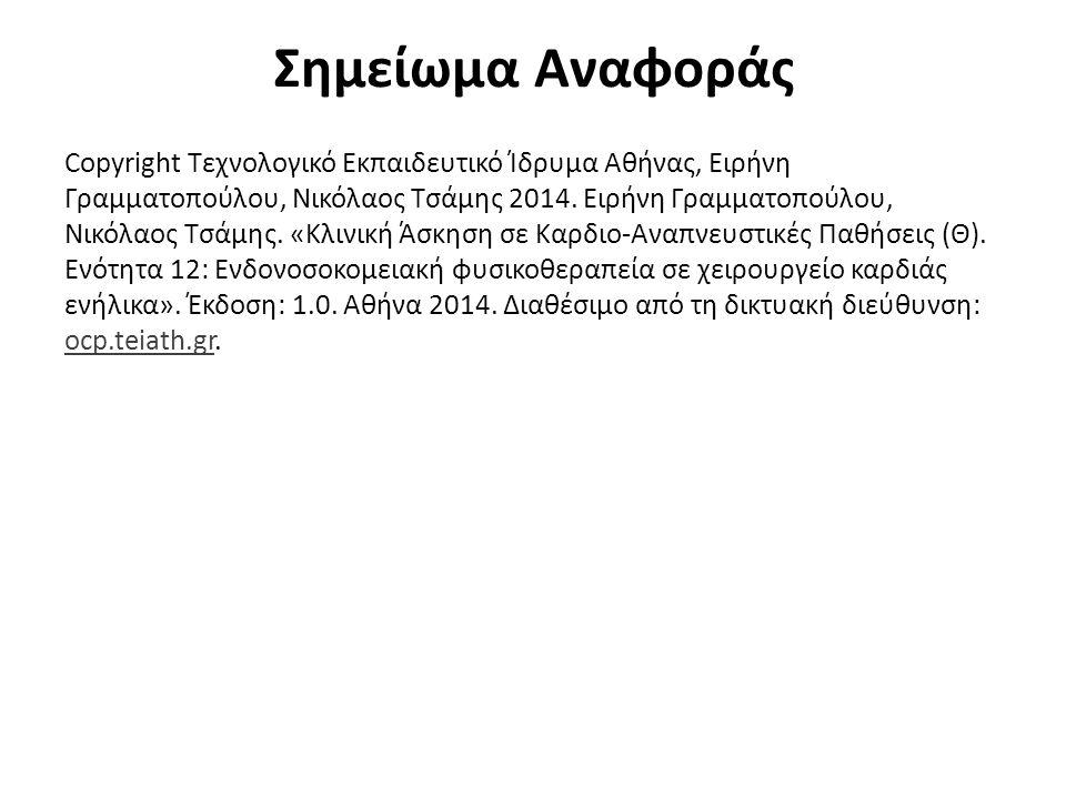 Σημείωμα Αναφοράς Copyright Τεχνολογικό Εκπαιδευτικό Ίδρυμα Αθήνας, Ειρήνη Γραμματοπούλου, Νικόλαος Τσάμης 2014. Ειρήνη Γραμματοπούλου, Νικόλαος Τσάμη