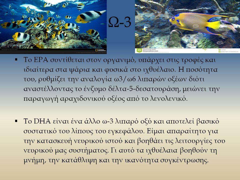 Ω-3  Το ΕΡΑ συντίθεται στον οργανιμό, υπάρχει στις τροφές και ιδιαίτερα στα ψάρια και φυσικά στο ιχθυέλαιο.