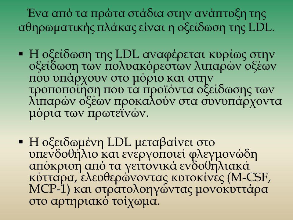 Ένα από τα πρώτα στάδια στην ανάπτυξη της αθηρωματικής πλάκας είναι η οξείδωση της LDL.