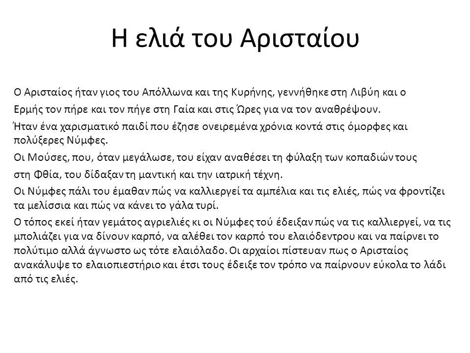 Η ελιά του Αρισταίου Ο Αρισταίος ήταν γιος του Απόλλωνα και της Κυρήνης, γεννήθηκε στη Λιβύη και ο Ερμής τον πήρε και τον πήγε στη Γαία και στις Ώρες