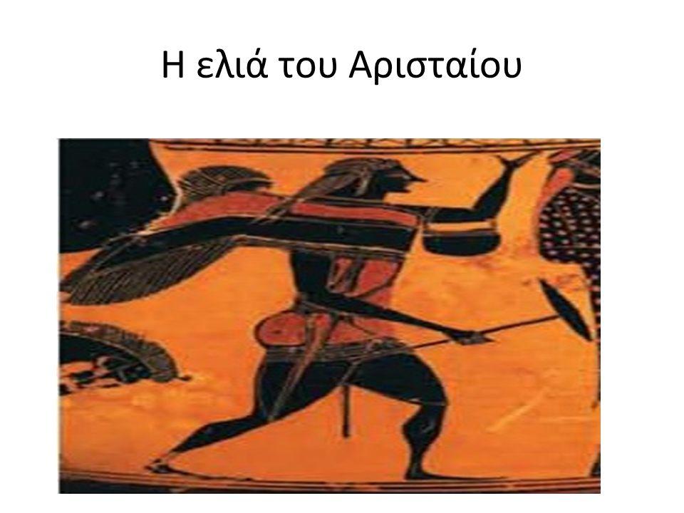 Η ελιά του Αρισταίου