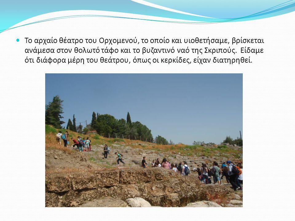 Το αρχαίο θέατρο του Ορχομενού, το οποίο και υιοθετήσαμε, βρίσκεται ανάμεσα στον θολωτό τάφο και το βυζαντινό ναό της Σκριπούς. Είδαμε ότι διάφορα μέρ