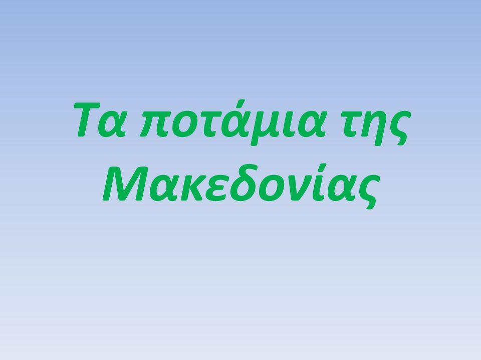 Τα ποτάμια της Μακεδονίας είναι: ΟΝΟΜΑΜΗΚΟΣ ΡΟΗΣ (χλμ.)ΠΗΓΕΣ Αλιάκμονας297Γράμμος Κόζιακας Νέστος130*Βουλγαρία Στρυμόνας118*Βουλγαρία Αξιός76*Π.Γ.Δ.Μ.