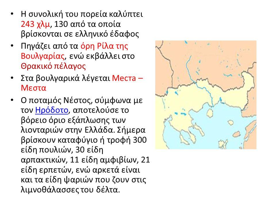 Η συνολική του πορεία καλύπτει 243 χλμ, 130 από τα οποία βρίσκονται σε ελληνικό έδαφος Πηγάζει από τα όρη Ρίλα της Βουλγαρίας, ενώ εκβάλλει στο Θρακικ