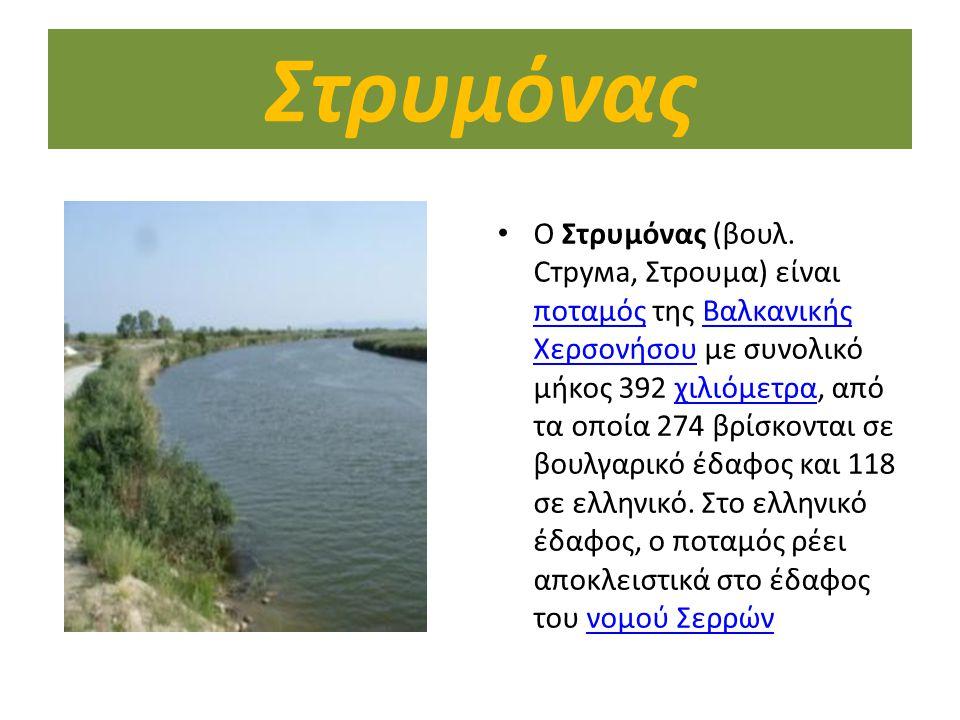 Στρυμόνας O Στρυμόνας (βουλ. Струма, Στρουμα) είναι ποταμός της Βαλκανικής Χερσονήσου με συνολικό μήκος 392 χιλιόμετρα, από τα οποία 274 βρίσκονται σε