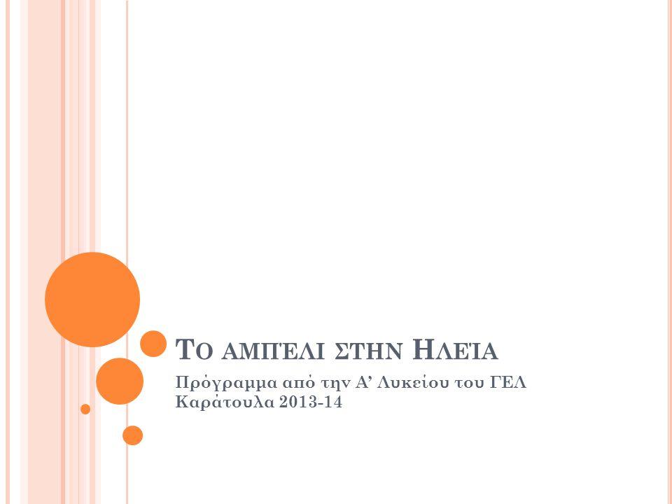 Τ Ο ΑΜΠΈΛΙ ΣΤΗΝ Η ΛΕΊΑ Πρόγραμμα από την Α' Λυκείου του ΓΕΛ Καράτουλα 2013-14