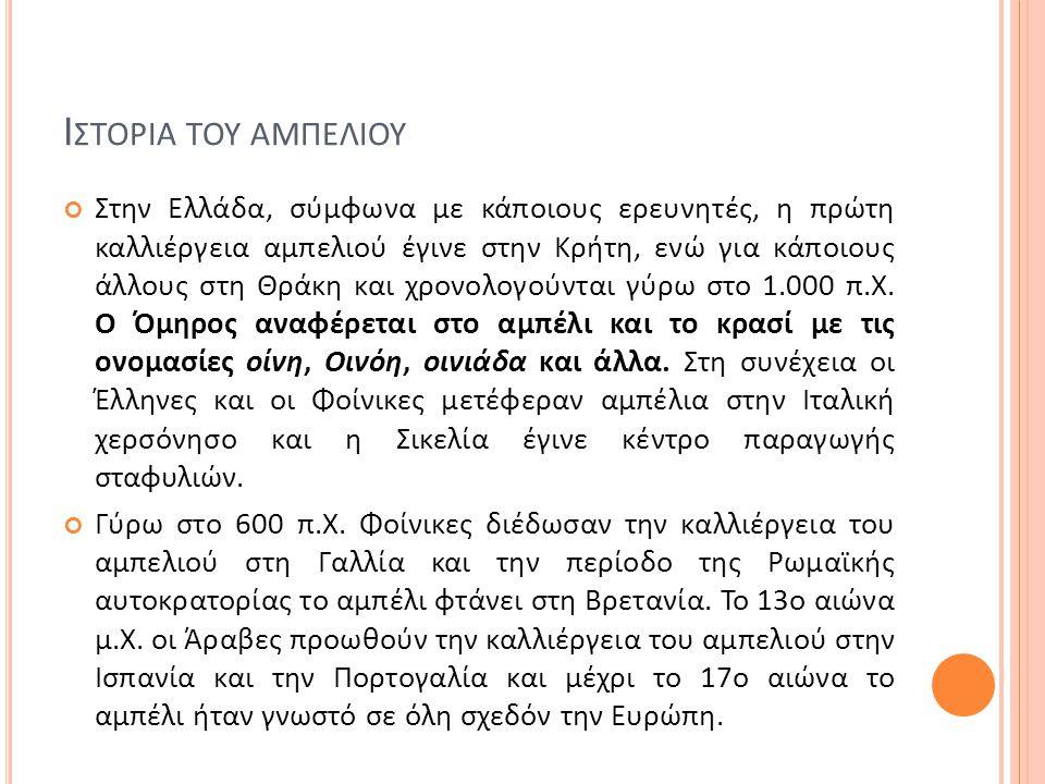 Ι ΣΤΟΡΙΑ ΤΟΥ ΑΜΠΕΛΙΟΥ Στην Ελλάδα, σύμφωνα με κάποιους ερευνητές, η πρώτη καλλιέργεια αμπελιού έγινε στην Κρήτη, ενώ για κάποιους άλλους στη Θράκη και