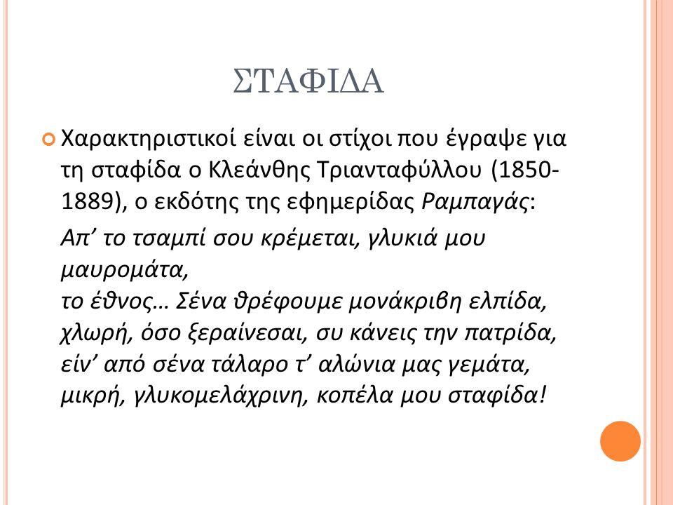 ΣΤΑΦΙΔΑ Χαρακτηριστικοί είναι οι στίχοι που έγραψε για τη σταφίδα ο Κλεάνθης Τριανταφύλλου (1850- 1889), ο εκδότης της εφημερίδας Ραμπαγάς: Απ' το τσα