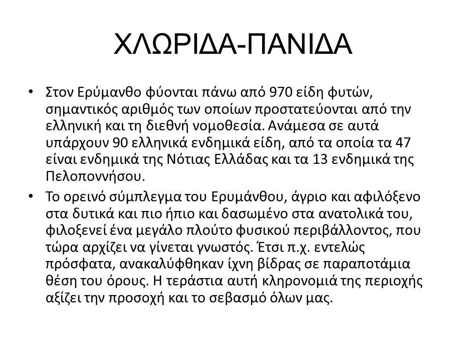 ΧΛΩΡΙΔΑ-ΠΑΝΙΔΑ Στoν Ερύμανθο φύονται πάνω από 970 είδη φυτών, σημαντικός αριθμός των οποίων προστατεύονται από την ελληνική και τη διεθνή νομοθεσία. Α