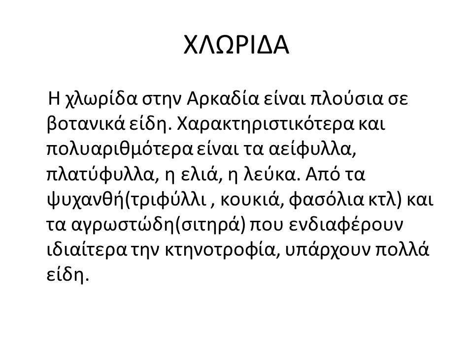 ΡΩΜΗ-ΒΥΖΑΝΤΙΟ Το 146 π.Χ.