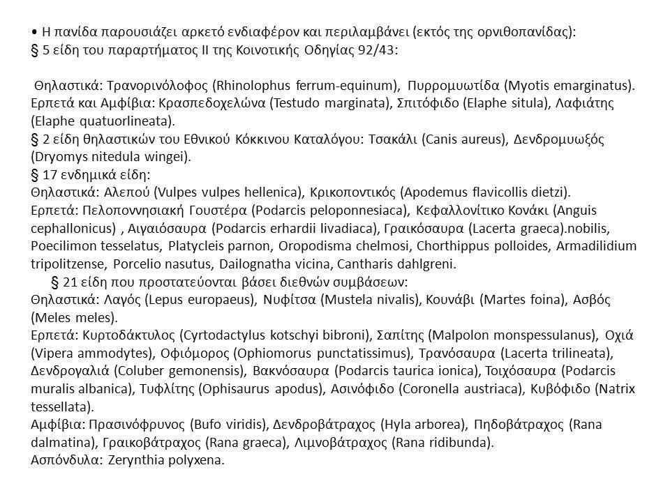 Η πανίδα παρουσιάζει αρκετό ενδιαφέρον και περιλαμβάνει (εκτός της ορνιθοπανίδας): § 5 είδη του παραρτήματος ΙΙ της Κοινοτικής Οδηγίας 92/43: Θηλαστικ
