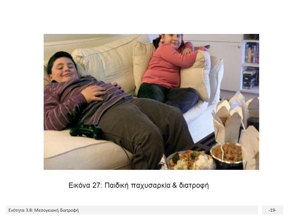 Ενότητα 3.8: Μεσογειακή διατροφή-19- Εικόνα 27: Παιδική παχυσαρκία & διατροφή