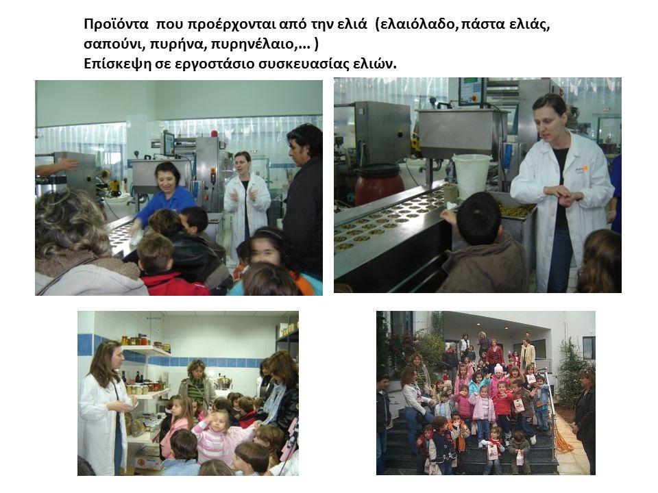Προϊόντα που προέρχονται από την ελιά (ελαιόλαδο, πάστα ελιάς, σαπούνι, πυρήνα, πυρηνέλαιο,... ) Επίσκεψη σε εργοστάσιο συσκευασίας ελιών.