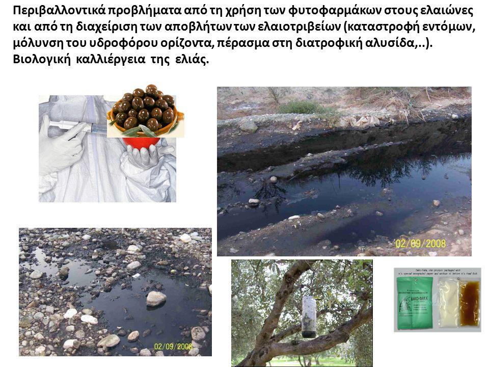 Περιβαλλοντικά προβλήματα από τη χρήση των φυτοφαρμάκων στους ελαιώνες και από τη διαχείριση των αποβλήτων των ελαιοτριβείων (καταστροφή εντόμων, μόλυ