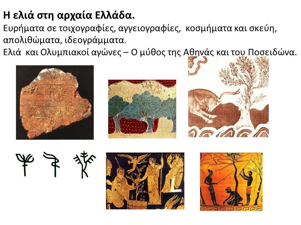 Η ελιά στη αρχαία Ελλάδα. Ευρήματα σε τοιχογραφίες, αγγειογραφίες, κοσμήματα και σκεύη, απολιθώματα, ιδεογράμματα. Ελιά και Ολυμπιακοί αγώνες – Ο μύθο