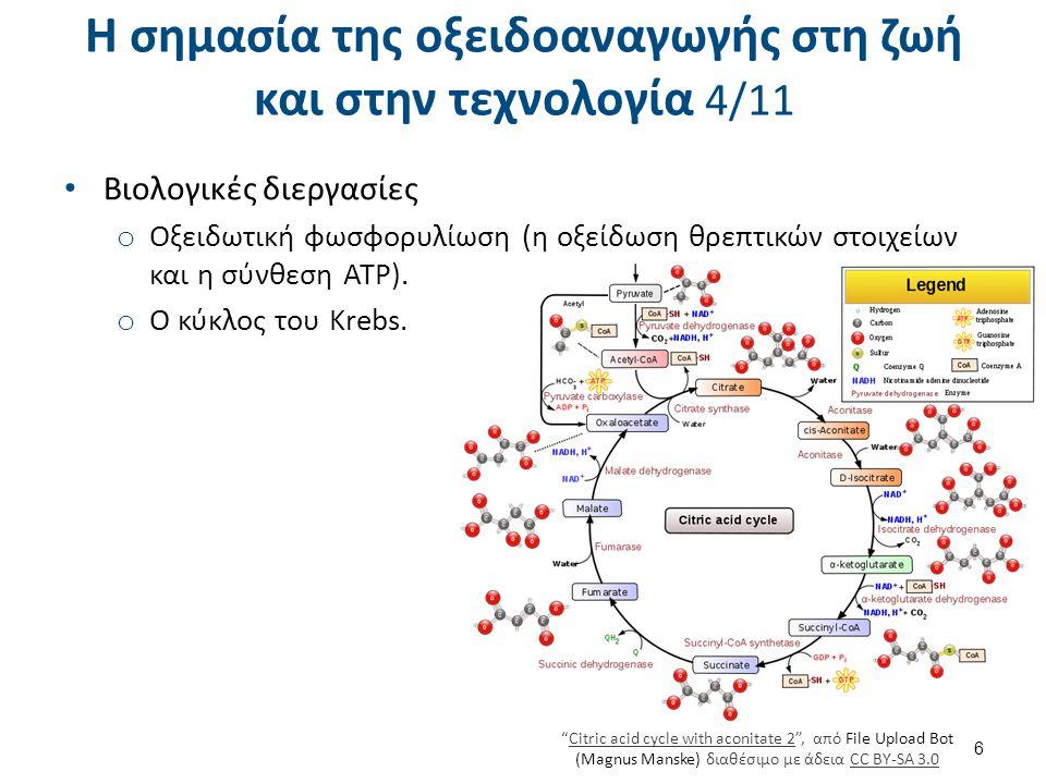 Η σημασία της οξειδοαναγωγής στη ζωή και στην τεχνολογία 4/11 Βιολογικές διεργασίες o Οξειδωτική φωσφορυλίωση (η οξείδωση θρεπτικών στοιχείων και η σύ