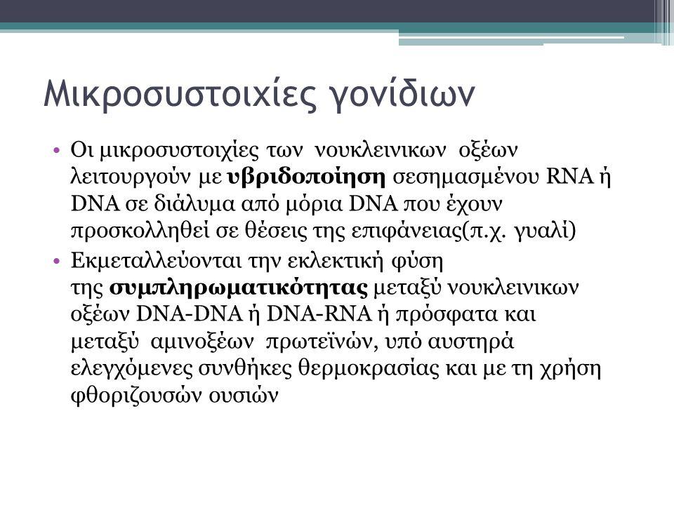 Μικροσυστοιχίες γονίδιων Οι μικροσυστοιχίες των νουκλεινικων οξέων λειτουργούν με υβριδοποίηση σεσημασμένου RNA ή DNA σε διάλυμα από μόρια DNA που έχουν προσκολληθεί σε θέσεις της επιφάνειας(π.χ.