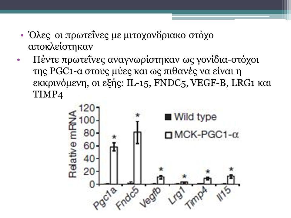 Όλες οι πρωτεΐνες με μιτοχονδριακο στόχο αποκλείστηκαν Πέντε πρωτεΐνες αναγνωρίστηκαν ως γονίδια-στόχοι της PGC1-α στους μύες και ως πιθανές να είναι η εκκρινόμενη, οι εξής: IL-15, FNDC5, VEGF-B, LRG1 και TIMP4