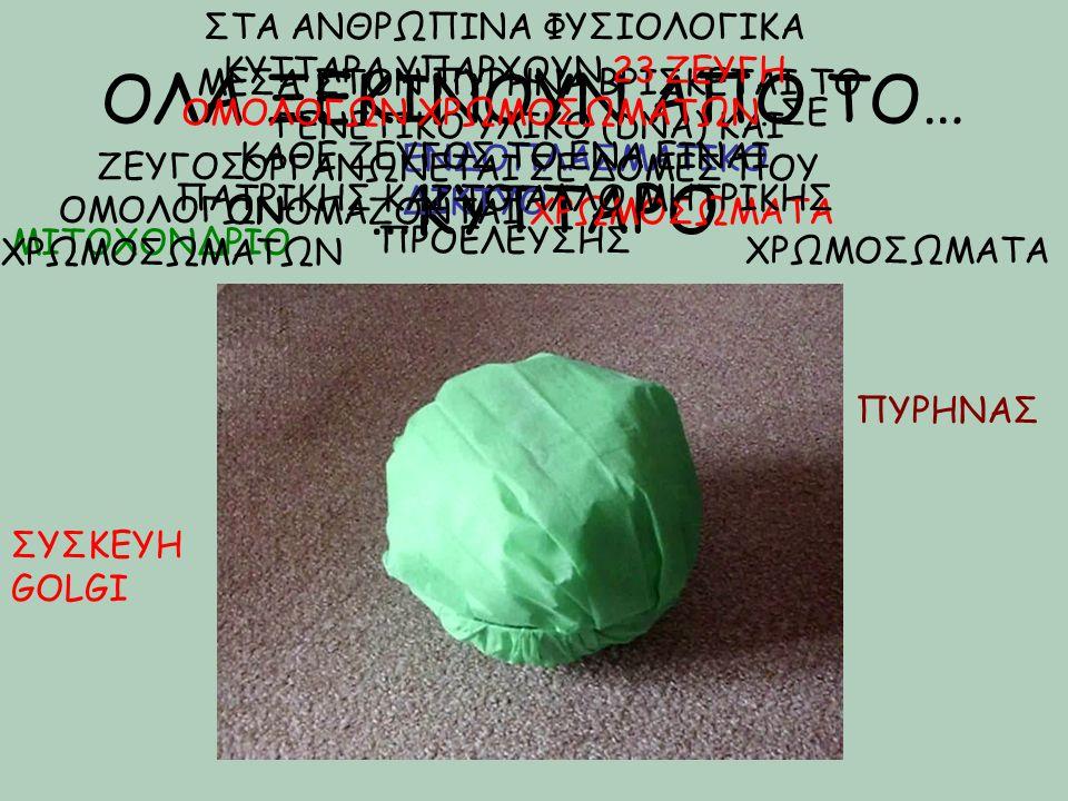 ΒΙΒΛΙΟΓΡΑΦΙΑ http://www.pharmacy.upatras.gr/index.