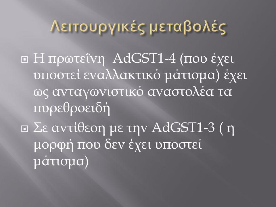  Η πρωτεΐνη AdGST1-4 (που έχει υποστεί εναλλακτικό μάτισμα) έχει ως ανταγωνιστικό αναστολέα τα πυρεθροειδή  Σε αντίθεση με την AdGST1-3 ( η μορφή πο
