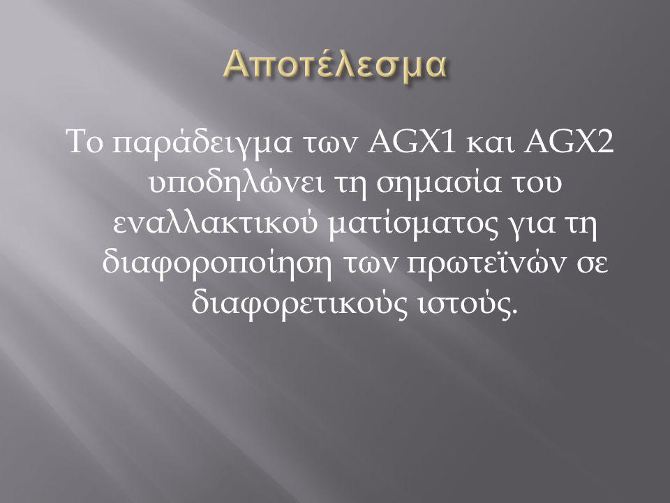 Το παράδειγμα των AGX1 και AGX2 υποδηλώνει τη σημασία του εναλλακτικού ματίσματος για τη διαφοροποίηση των πρωτεϊνών σε διαφορετικούς ιστούς.