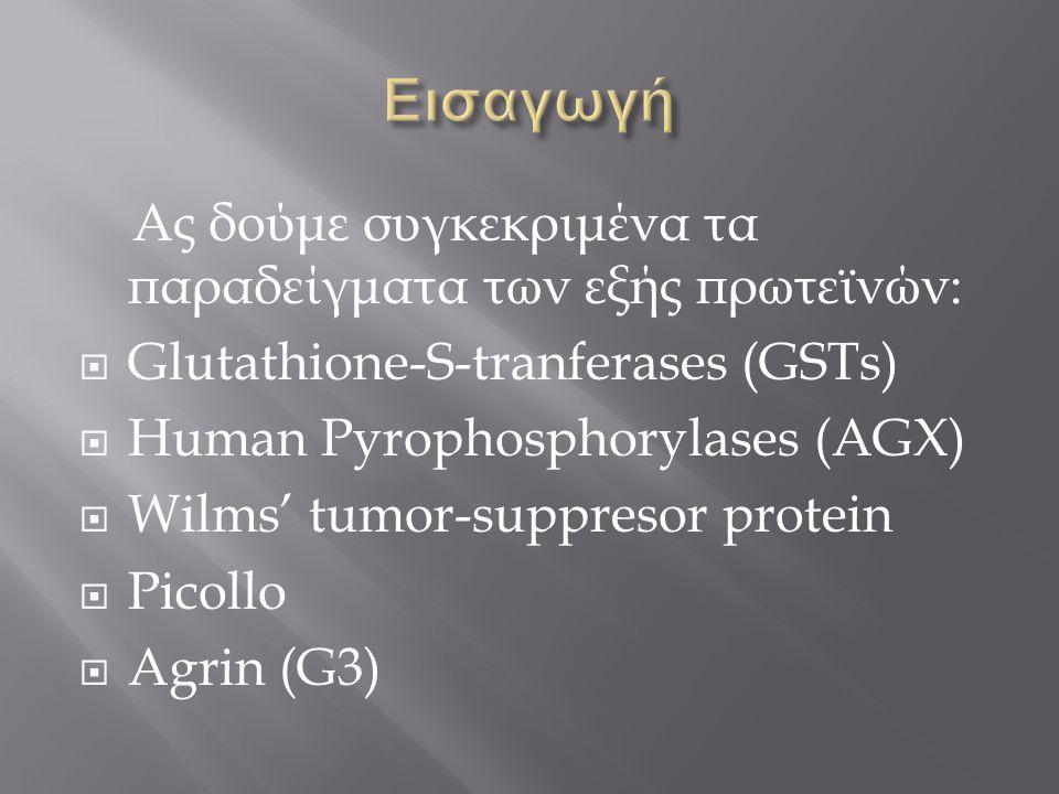 Ας δούμε συγκεκριμένα τα παραδείγματα των εξής πρωτεϊνών:  Glutathione-S-tranferases (GSTs)  Human Pyrophosphorylases (AGX)  Wilms' tumor-suppresor