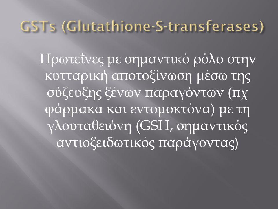 Πρωτεΐνες με σημαντικό ρόλο στην κυτταρική αποτοξίνωση μέσω της σύζευξης ξένων παραγόντων (πχ φάρμακα και εντομοκτόνα) με τη γλουταθειόνη (GSH, σημαντ