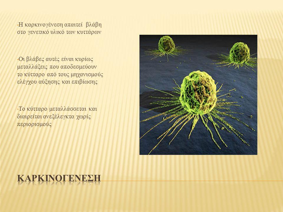 Η καρκινογένεση απαιτεί βλάβη στο γενετικό υλικό των κυττάρων Οι βλάβες αυτές είναι κυρίως μεταλλάξεις που αποδεσμεύουν το κύτταρο από τους μηχανισμούς ελέγχου αύξησης και επιβίωσης Το κύτταρο μεταλλάσσεται και διαιρείται ανεξέλεγκτα χωρίς περιορισμούς