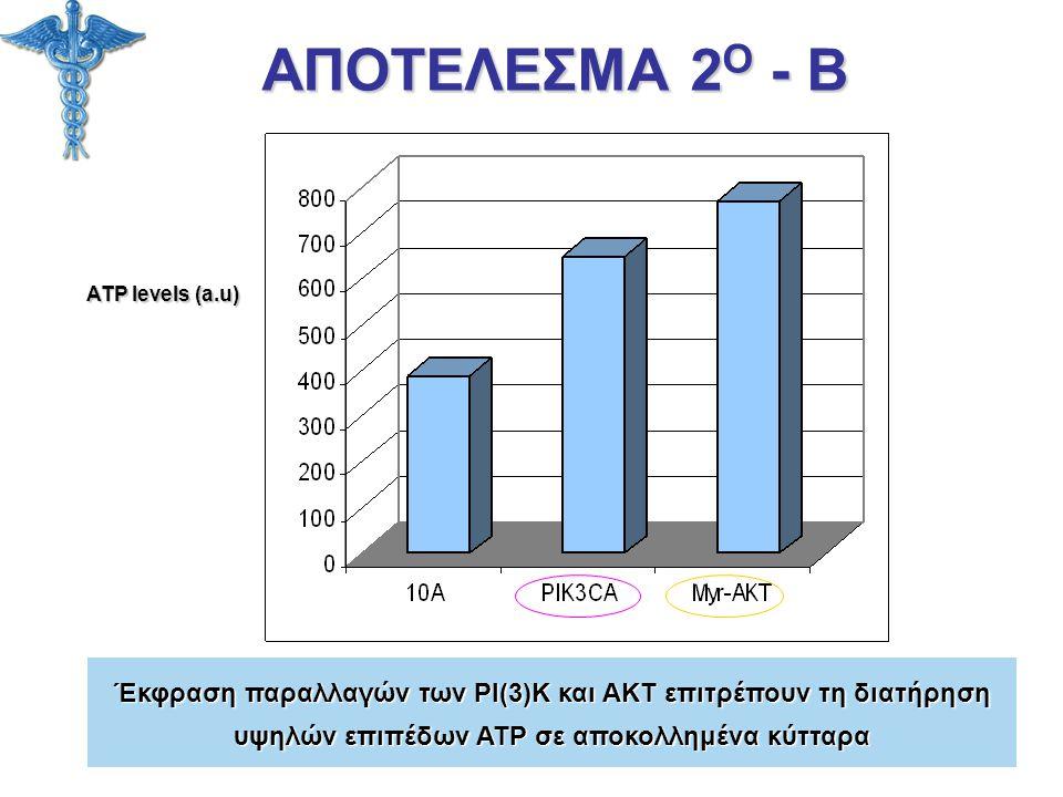 ΑΠΟΤΕΛΕΣΜΑ 2 Ο - Β ATP levels (a.u) Έκφραση παραλλαγών των PI(3)K και AKT επιτρέπουν τη διατήρηση υψηλών επιπέδων ATP σε αποκολλημένα κύτταρα