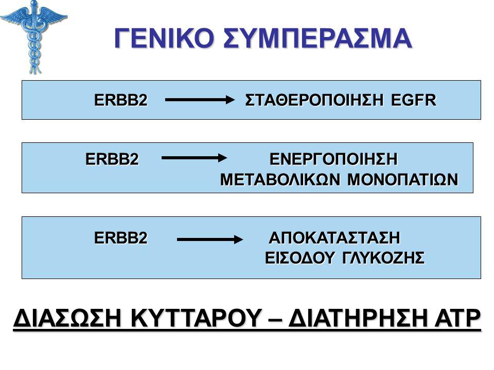 ΓΕΝΙΚΟ ΣΥΜΠΕΡΑΣΜΑ ERBB2 ΣΤΑΘΕΡΟΠΟΙΗΣΗ EGFR ERBB2 ΣΤΑΘΕΡΟΠΟΙΗΣΗ EGFR ΕRBB2 ΕΝΕΡΓΟΠΟΙΗΣΗ ΕRBB2 ΕΝΕΡΓΟΠΟΙΗΣΗ ΜΕΤΑΒΟΛΙΚΩΝ ΜΟΝΟΠΑΤΙΩΝ ΜΕΤΑΒΟΛΙΚΩΝ ΜΟΝΟΠΑΤΙΩ