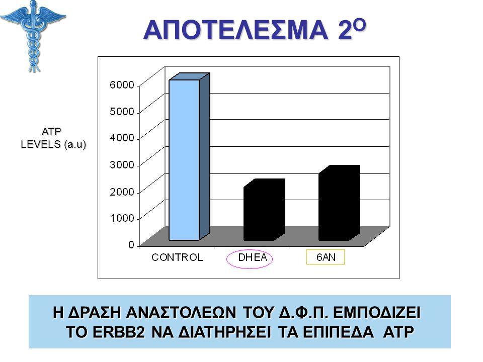 ΑΠΟΤΕΛΕΣΜΑ 2 Ο ATP LEVELS (a.u) Η ΔΡΑΣΗ ΑΝΑΣΤΟΛΕΩΝ ΤΟΥ Δ.Φ.Π. ΕΜΠΟΔΙΖΕΙ ΤΟ ERBB2 ΝΑ ΔΙΑΤΗΡΗΣΕΙ ΤΑ ΕΠΙΠΕΔΑ ATP