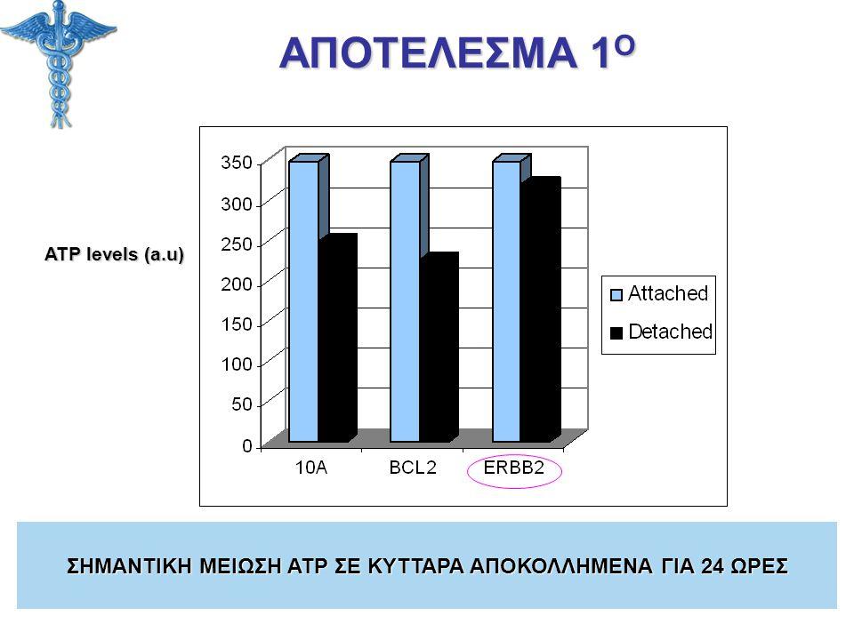 ATP levels (a.u) ΑΠΟΤΕΛΕΣΜΑ 1 Ο ΣΗΜΑΝΤΙΚΗ ΜΕΙΩΣΗ ATP ΣΕ ΚΥΤΤΑΡΑ ΑΠΟΚΟΛΛΗΜΕΝΑ ΓΙΑ 24 ΩΡΕΣ