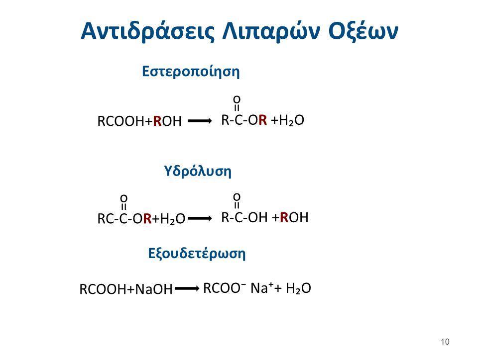 Αντιδράσεις Λιπαρών Οξέων Εστεροποίηση RCOOH+ROH R-C-OR +H₂O = o Υδρόλυση RC-C-OR+H₂O R-C-OH +ROH = o = o Εξουδετέρωση RCOOH+NaOH RCOO⁻ Na⁺+ H₂O 10