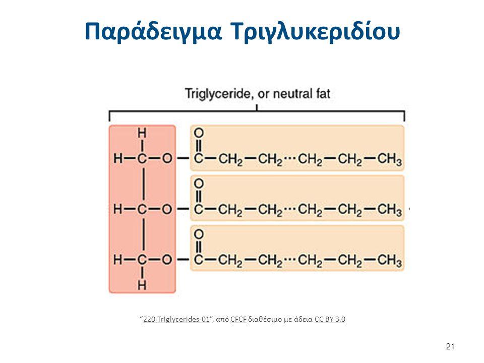 """Παράδειγμα Τριγλυκεριδίου 21 """"220 Triglycerides-01"""", από CFCF διαθέσιμο με άδεια CC BY 3.0220 Triglycerides-01CFCFCC BY 3.0"""