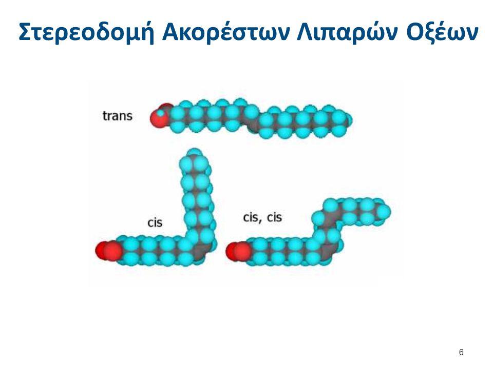 Στερεοδομή Ακορέστων Λιπαρών Οξέων 6