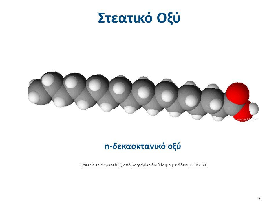 """Στεατικό Οξύ n-δεκαοκτανικό οξύ 8 """"Stearic acid spacefill"""", από Borgdylan διαθέσιμο με άδεια CC BY 3.0Stearic acid spacefillBorgdylanCC BY 3.0"""
