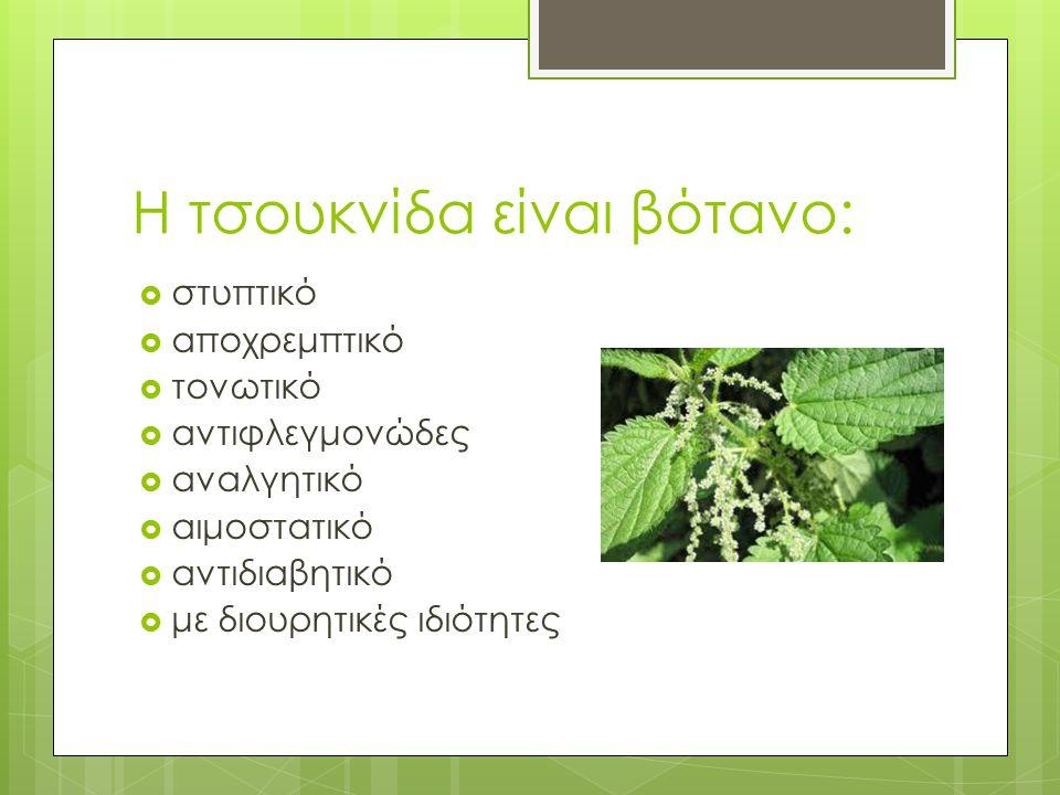 Η τσουκνίδα είναι βότανο:  στυπτικό  αποχρεμπτικό  τονωτικό  αντιφλεγμονώδες  αναλγητικό  αιμοστατικό  αντιδιαβητικό  με διουρητικές ιδιότητες