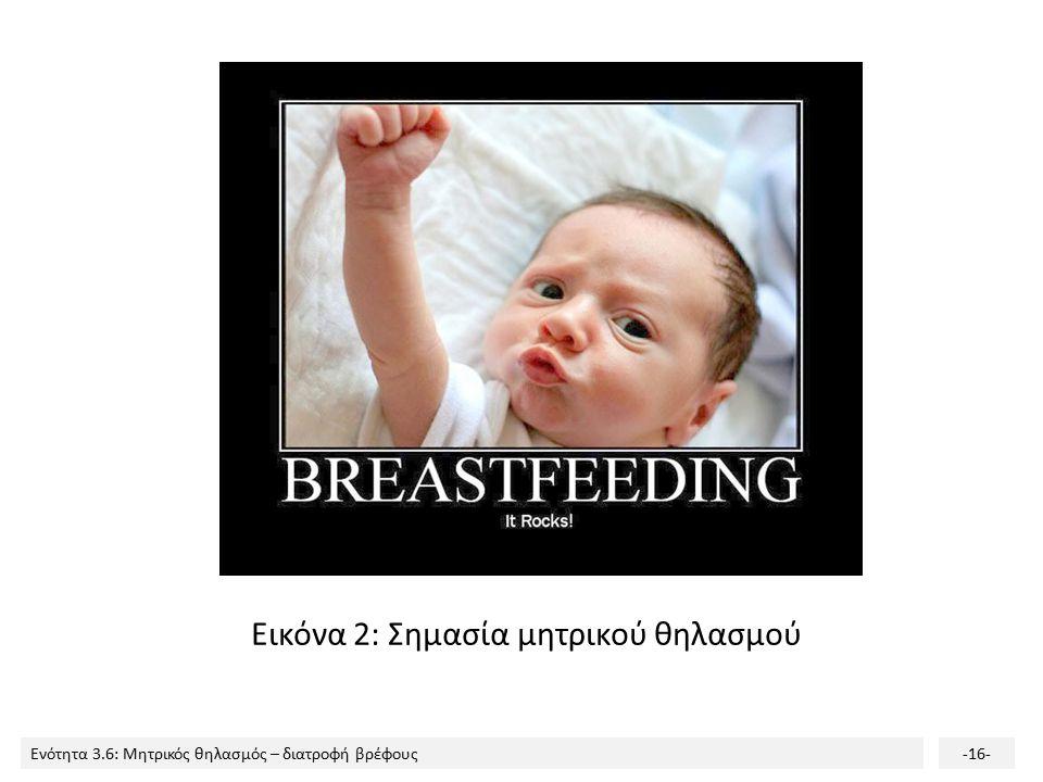 Ενότητα 3.6: Μητρικός θηλασμός – διατροφή βρέφους-16- Εικόνα 2: Σημασία μητρικού θηλασμού