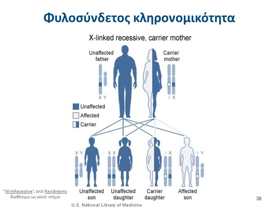 """Φυλοσύνδετος κληρονομικότητα 38 """"XlinkRecessive"""", από Ravidreams διαθέσιμο ως κοινό κτήμαXlinkRecessiveRavidreams"""