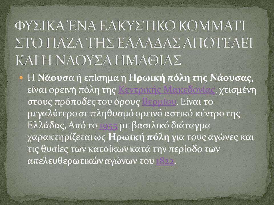 Η Νάουσα ή επίσημα η Ηρωική πόλη της Νάουσας, είναι ορεινή πόλη της Κεντρικής Μακεδονίας, χτισμένη στους πρόποδες του όρους Βερμίου. Είναι το μεγαλύτε