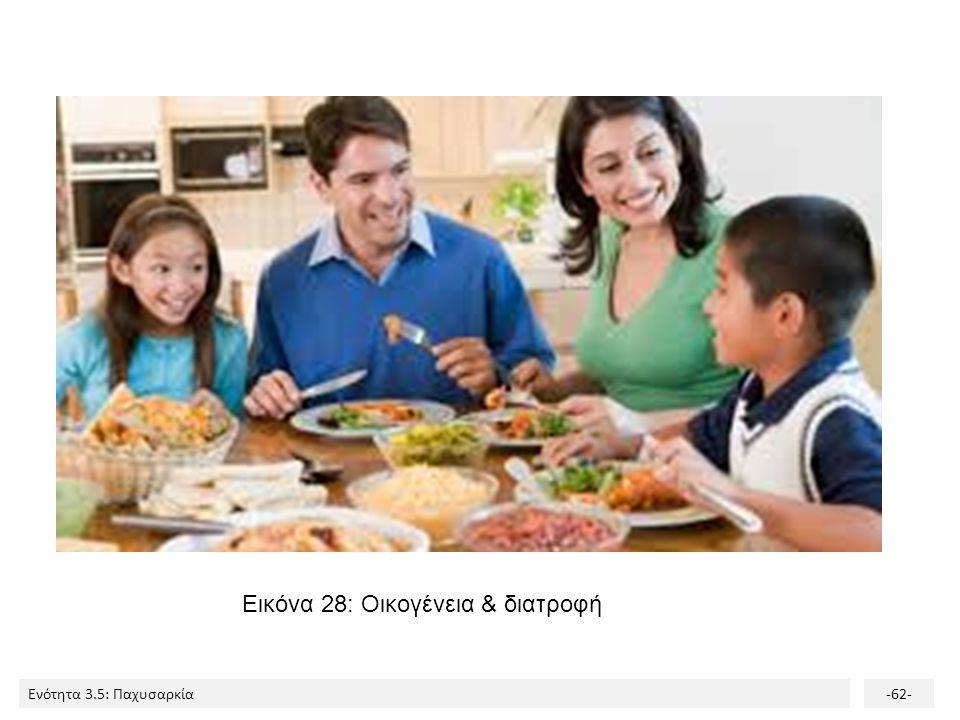 Ενότητα 3.5: Παχυσαρκία-62- Εικόνα 28: Οικογένεια & διατροφή