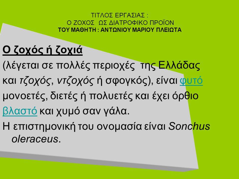 Ο ζοχός ή ζοχιά (λέγεται σε πολλές περιοχές της Ελλάδας και τζοχός, ντζοχός ή σφογκός), είναι φυτόφυτό μονοετές, διετές ή πολυετές και έχει όρθιο βλασ