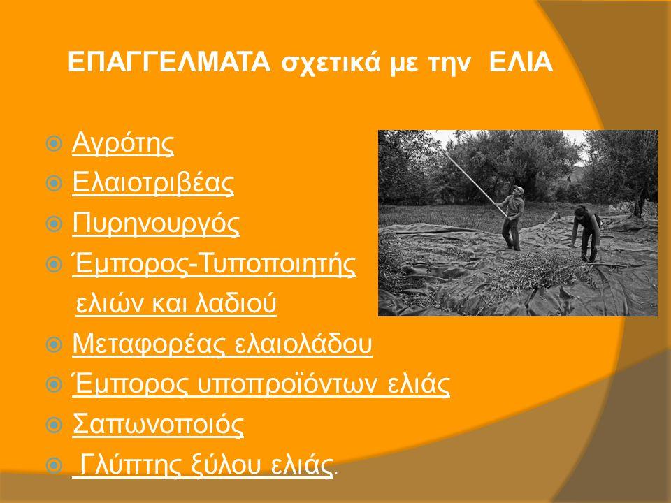 ΕΠΑΓΓΕΛΜΑΤΑ σχετικά με την ΕΛΙΑ  Αγρότης  Ελαιοτριβέας  Πυρηνουργός  Έμπορος-Τυποποιητής ελιών και λαδιού  Μεταφορέας ελαιολάδου  Έμπορος υποπρο