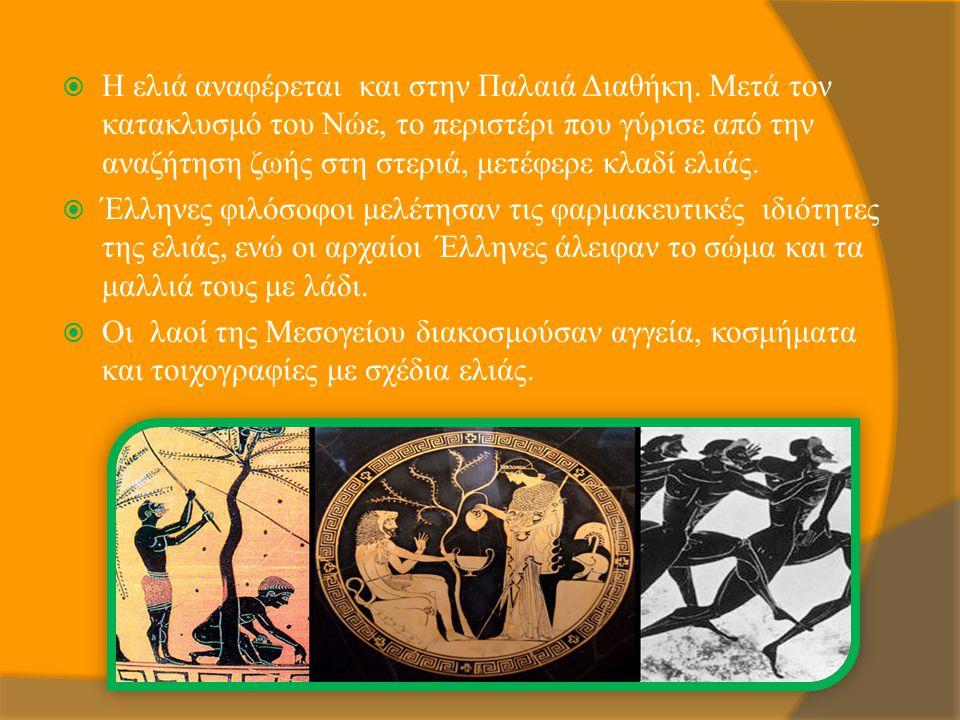  Η ελιά αναφέρεται και στην Παλαιά Διαθήκη. Μετά τον κατακλυσμό του Νώε, το περιστέρι που γύρισε από την αναζήτηση ζωής στη στεριά, μετέφερε κλαδί ελ