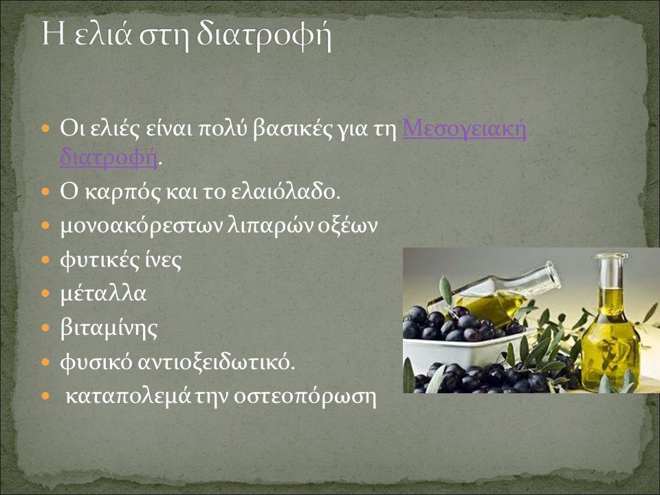 Οι ελιές είναι πολύ βασικές για τη Μεσογειακή διατροφή.Μεσογειακή διατροφή Ο καρπός και το ελαιόλαδο.