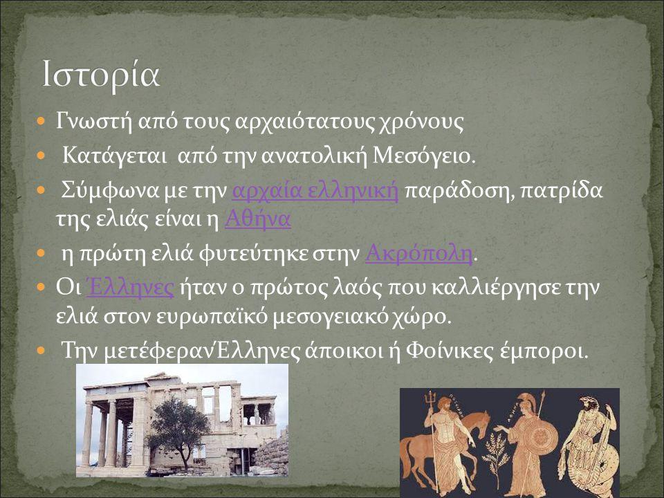 Γνωστή από τους αρχαιότατους χρόνους Κατάγεται από την ανατολική Μεσόγειο.