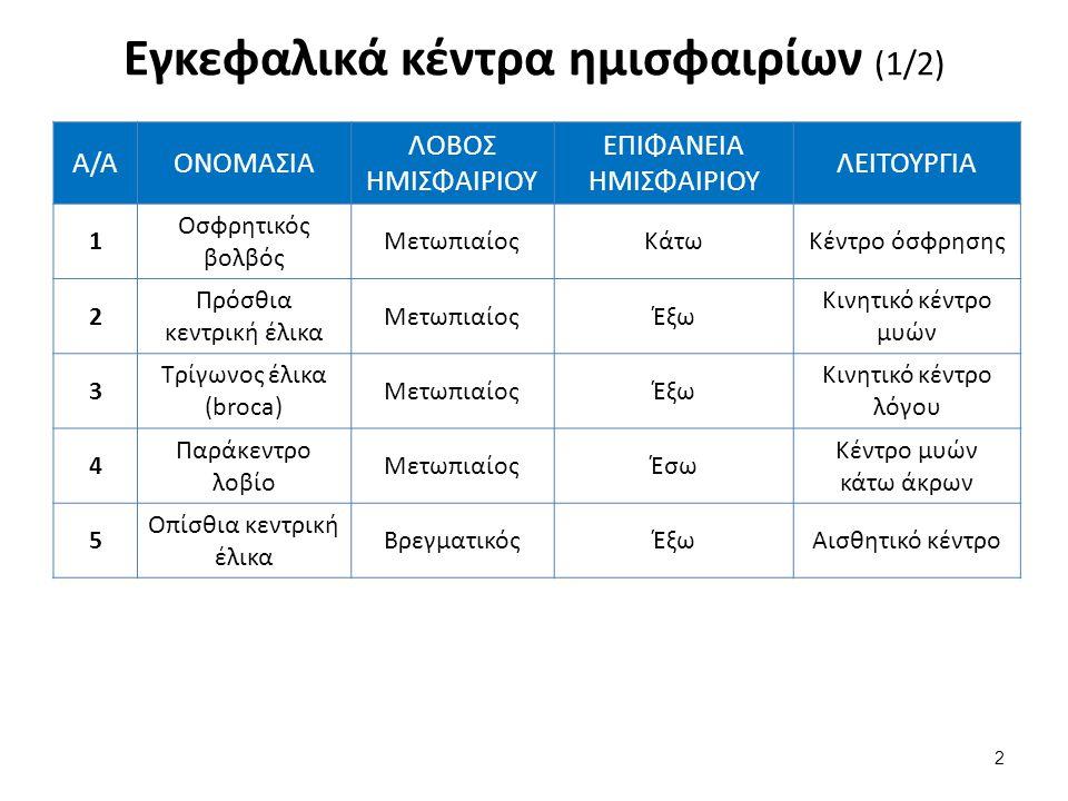 Α/ΑΟΝΟΜΑΣΙΑ ΛΟΒΟΣ ΗΜΙΣΦΑΙΡΙΟΥ ΕΠΙΦΑΝΕΙΑ ΗΜΙΣΦΑΙΡΙΟΥ ΛΕΙΤΟΥΡΓΙΑ 6 Κεντρικό Ή Τετράπλευρο Ή Προσφηνοειδές Λοβίο Βρεγματικός Άνω Βρεγματικό Λοβίο Έσω Κέντρο Μυϊκής Αίσθησης 7 Υπερχείλιος Έλικα Βρεγματικός Κάτω Βρεγματικό Λοβίο Έξω Ακουστικό Κέντρο Λόγου 8Γωνιώδης Έλικα Βρεγματικός Κάτω Βρεγματικό Λοβίο Έξω Οπτικό Κέντρο Λόγου 9 Άνω Κροταφική Έλικα Κροταφικός Λοβός ΈξωΚέντρο Ακοής 10 Σφηνοειδές Λοβίο Ινιακός ΛοβόςΈσωΚέντρο Όρασης Εγκεφαλικά κέντρα ημισφαιρίων (2/2) 3