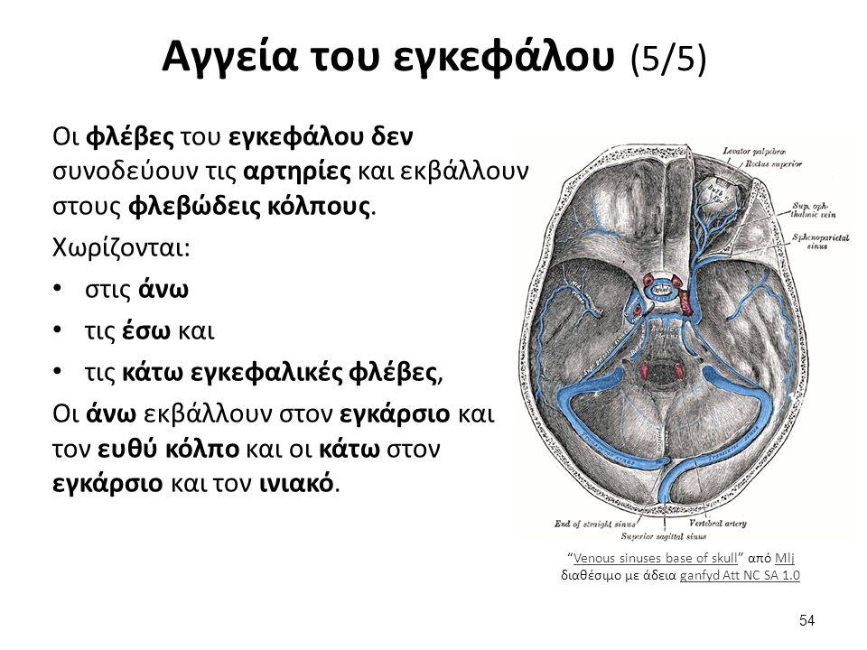 """Venous sinuses base of skull"" από Mlj διαθέσιμο με άδεια ganfyd Att NC SA 1.0Venous sinuses base of skullMljganfyd Att NC SA 1.0 Αγγεία του εγκεφάλου"
