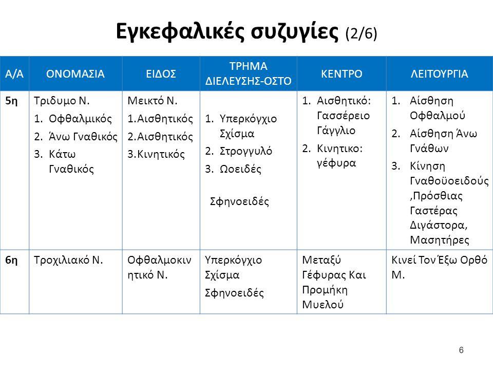Α/ΑΟΝΟΜΑΣΙΑΕΙΔΟΣ ΤΡΗΜΑ ΔΙΕΛΕΥΣΗΣ-ΟΣΤΟ ΚΕΝΤΡΟΛΕΙΤΟΥΡΓΙΑ 5ηΤριδυμο Ν. 1. 1.Οφθαλμικός 2. 2.Άνω Γναθικός 3. 3.Κάτω Γναθικός Μεικτό Ν. 1. 1.Αισθητικός 2.